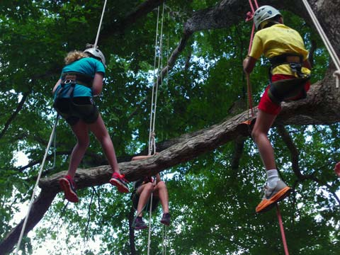 Three teens suspended on ropes in a tree